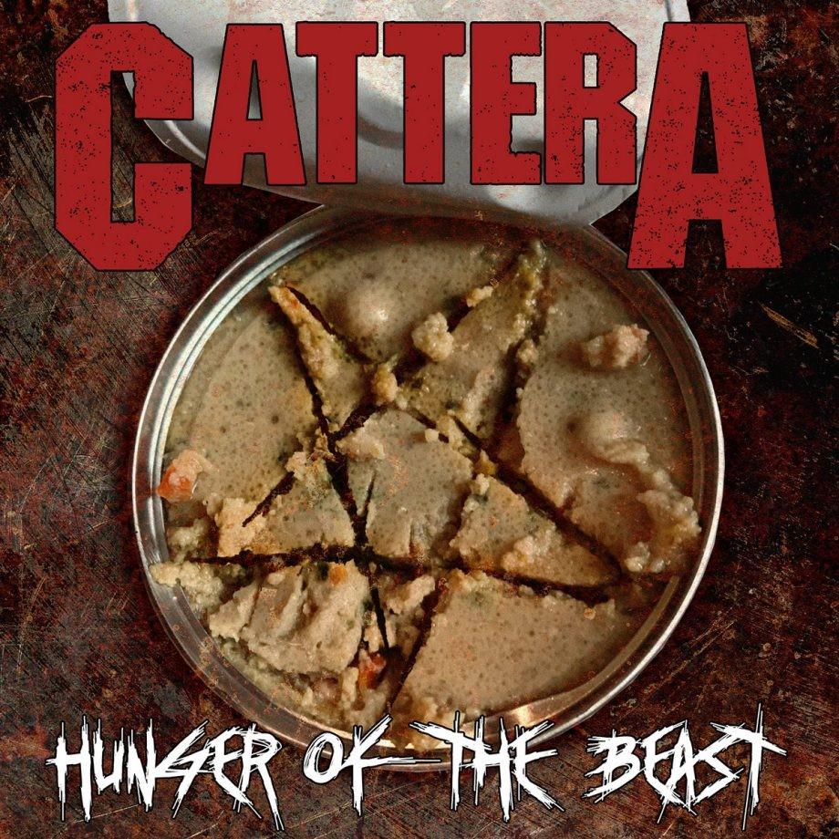 cattera, el proyecto musical que tiene a un gatito como vocalista